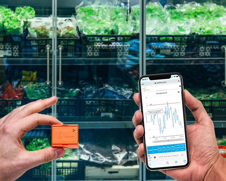 Food temperature monitoring system